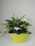 composition-florale-flutre-eu08