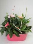 composition-florale-flutre-eu11