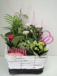 composition-florale-flutre-eu13