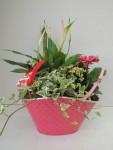 composition-florale-flutre-eu15