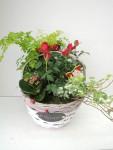composition-florale-flutre-eu18