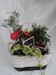 composition-florale-flutre-eu25