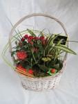 composition-florale-flutre-eu26
