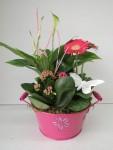 composition-florale-flutre-eu30