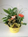 composition-florale-flutre-eu31