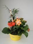 composition-florale-flutre-eu33