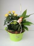 composition-florale-flutre-eu36