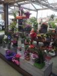 compositions-fleurs-magasin-flutre