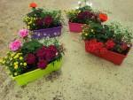 jardiniere-fleurs-fleuriste-flutre-eu