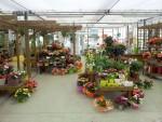 magasin-fleurs-fleuriste-flutre-eu