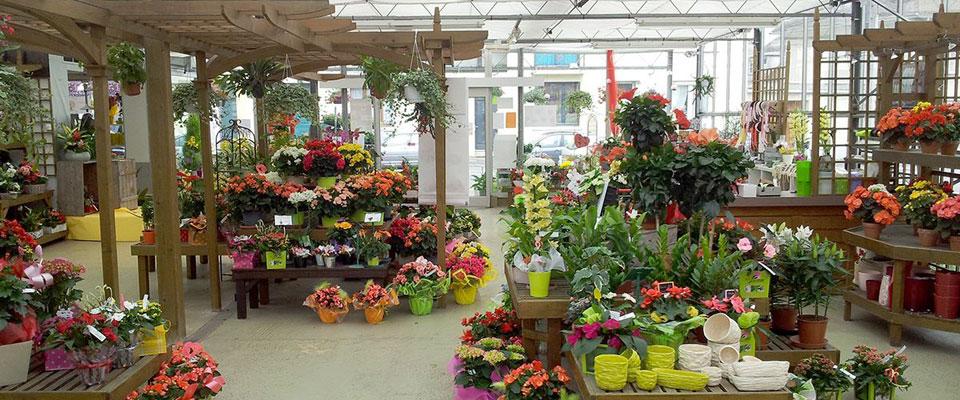 site de production horticole et fleuristerie ets flutre